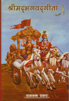 krishna on hindi gita cover